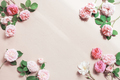 Tender Background with Pink Roses and Sunlight - PhotoDune Item for Sale
