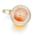 Mug of beer - PhotoDune Item for Sale