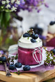 Blueberry Panna Cotta - PhotoDune Item for Sale