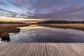 Boardwalk in natural heathland fen - PhotoDune Item for Sale