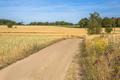 Walking track Bergherbos - PhotoDune Item for Sale