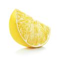 Lemon slice - PhotoDune Item for Sale