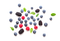 various berry fruits - PhotoDune Item for Sale