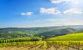 Radda in Chianti vineyard and panorama. Tuscany, Italy - PhotoDune Item for Sale