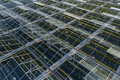 Indoor farming. Aerial top view of glass greenhouse plant - PhotoDune Item for Sale
