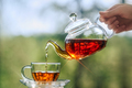 Woman pours tea from a glass teapot into a glass Cup - PhotoDune Item for Sale