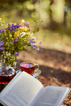 Cup and teapot in nature in the forest - PhotoDune Item for Sale