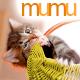Charming Chubby Cat