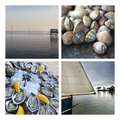 Seafood and seascapes - PhotoDune Item for Sale