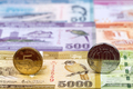 Sri Lankan coins on the background of money - PhotoDune Item for Sale