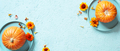 Blue Banner with Pumpkins Decorated with Flowers - PhotoDune Item for Sale