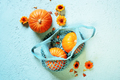 Pumpkins in the Blue Mesh Bag Decorated with Flowers - PhotoDune Item for Sale