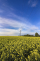 Power lines - PhotoDune Item for Sale