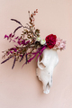 White cow skull decorated with flowers - PhotoDune Item for Sale