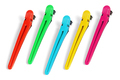 Five Colorful Hair Clips - PhotoDune Item for Sale