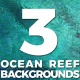 Ocean Reef Top View Background - VideoHive Item for Sale