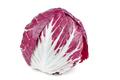 Fresh head of radicchio salad isolated on white background - PhotoDune Item for Sale