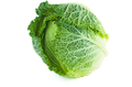 Savoy cabbage isolated on white - PhotoDune Item for Sale