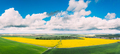 Aerial View Of Agricultural Landscape With Flowering Blooming Rapeseed, Oilseed In Field Meadow In - PhotoDune Item for Sale