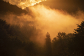 Magic foggy sunset in transylvaninan mountains. - PhotoDune Item for Sale