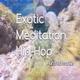 Exotic Meditation Hip-Hop