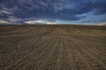 plowed field - PhotoDune Item for Sale