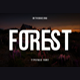 Forest - GraphicRiver Item for Sale