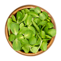 Sunflower sprouts, microgreen and fresh shoots, in a wooden bowl - PhotoDune Item for Sale