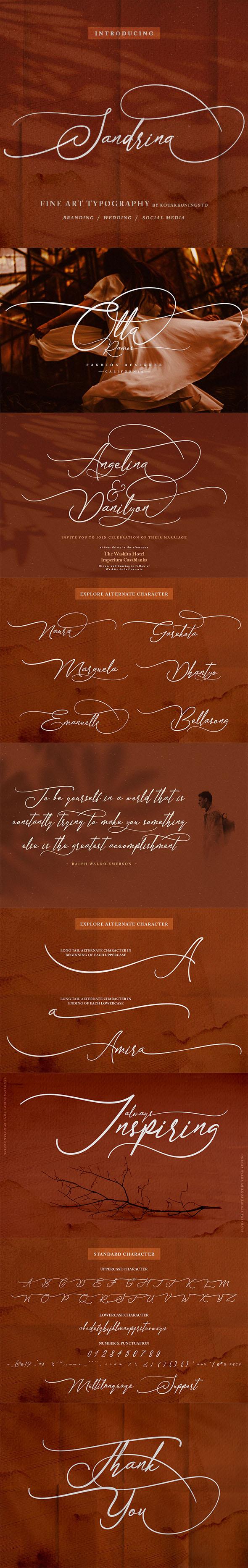 Sandrina- Elegant Script Font