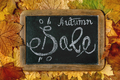 Autumn sale concept - PhotoDune Item for Sale