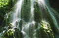 Jungle waterfall detail - PhotoDune Item for Sale