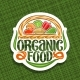 Vector Logo for Organic Food - GraphicRiver Item for Sale