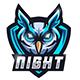 Esport Logo Night Owl - GraphicRiver Item for Sale
