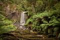 Hopetoun Falls Landscape - PhotoDune Item for Sale