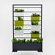 Blooma vegetal divider decor - 3DOcean Item for Sale