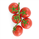 Branch with Red Tomatoes - 3DOcean Item for Sale
