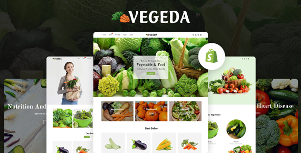 Vegeda - Vegetables And Organic Food eCommerce Shopify Theme