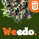 Weedo | Cannabis Listing HTML5 Template - ThemeForest Item for Sale