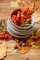 Autumn seasonal background - PhotoDune Item for Sale