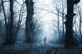 Scary monster in haunted forest with fog - PhotoDune Item for Sale