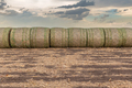 Hay bales on grassy farmland - PhotoDune Item for Sale
