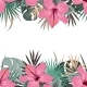 Summer Border with Tropical Palm Leaves and - GraphicRiver Item for Sale