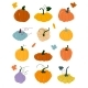Pumpkin of Various Shapes and Colors - GraphicRiver Item for Sale