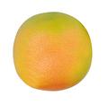 grapefruit isolated on white - PhotoDune Item for Sale