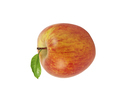 Red apple with leaf isolated on white background - PhotoDune Item for Sale
