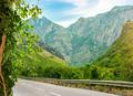 Winding road in Montenegro - PhotoDune Item for Sale