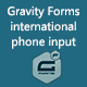 Gravity Forms international phone input - CodeCanyon Item for Sale
