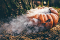 Halloween pumpkin with smoke in autumn forest. - PhotoDune Item for Sale