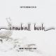 Snowball Bush - GraphicRiver Item for Sale