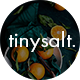 TinySalt - Personal Food Blog WordPress Theme - ThemeForest Item for Sale